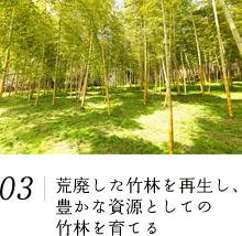 荒廃した竹林を再生し、豊かな資源としての竹林を育てる