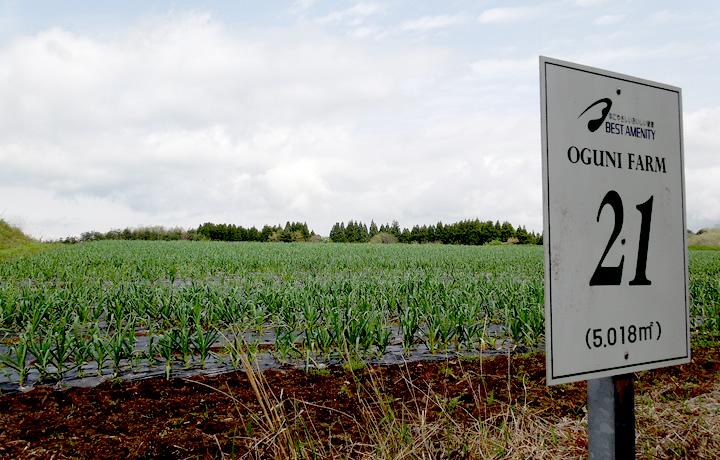 土作りから始まる農業