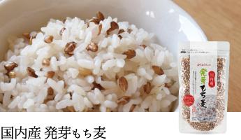 国内産発芽もち麦